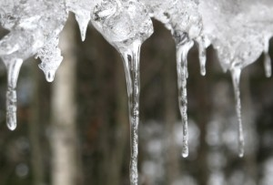 Wintry Icicles. Photo courtesy of A House Called Nut
