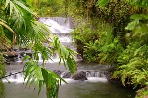 Costa Rica-Tabacon Hot Springs, La Fortuna