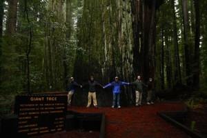 Roosevelt Forest, CA
