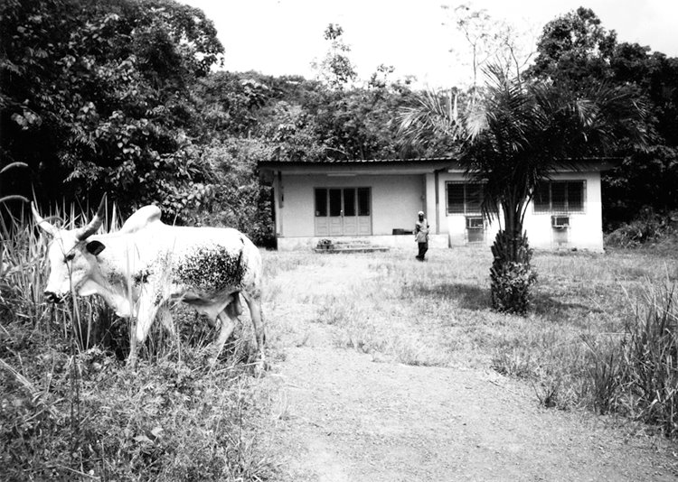 Bonnie Black's house in Gabon Photo by Martha Cooper