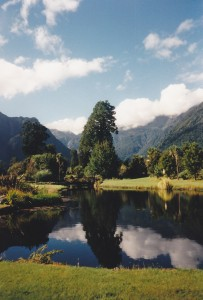 Pond in New Zealand