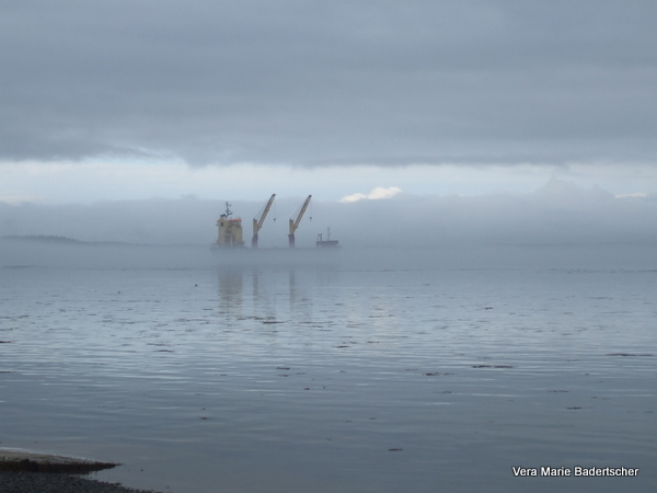 Ship emerging from fog Campobello