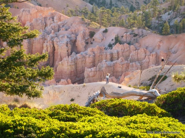 Hiker at Bryce Canyon, Utah