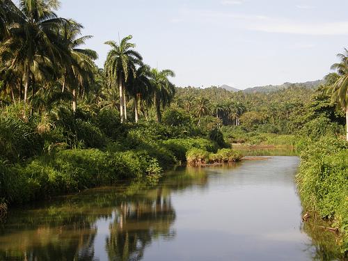 Humboldt Park, Cuba