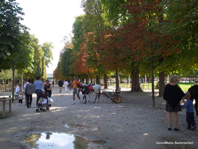 Pony carts in the Tuileries