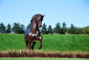 Akamu - daVinci Horse