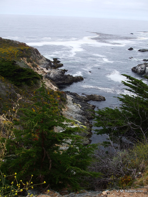 Land meets water, Big Sur