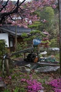 Japan Inn