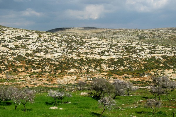 Palestine countryside near Sebastia
