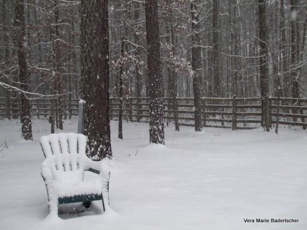 Virginia Snowstorm