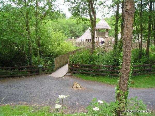 Irish Iron age village