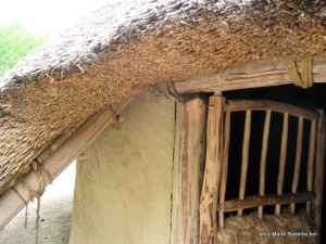 Roof of reconstructed Iron Age cottage