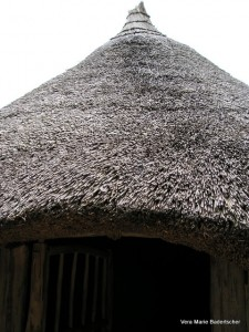 Roof of Iron Age house