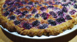 Missouri Blackberry Custard Pie