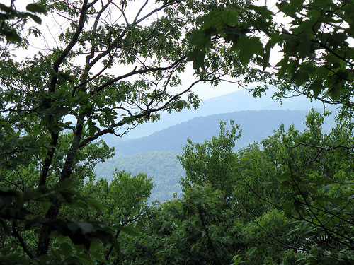 View from Springer Mountain in Georgia, Southern Terminus of the Appalachian Trail