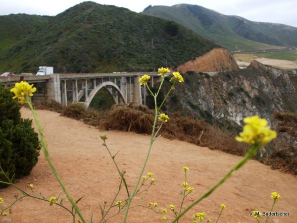 Bridge on Rt One highway, Big Sur coast