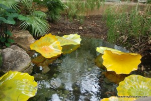 "Chihuly Glass Art, ""Persians"""