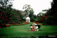 Cupola and Southern Belles at Cypress Gardens