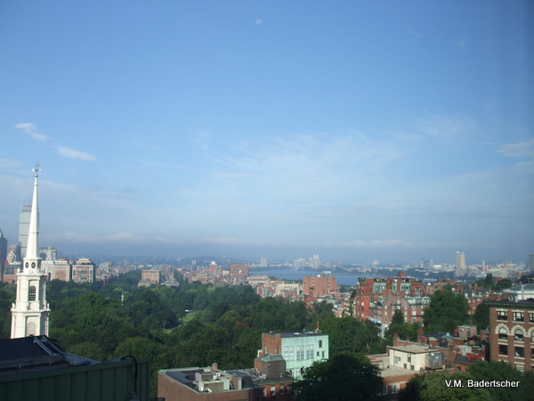 Literary Boston View