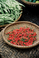 Vietnam food: Chilis and Beans, Hoi An