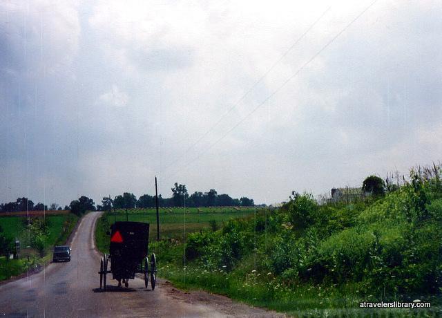 Amish buggy, Holmes County Ohio