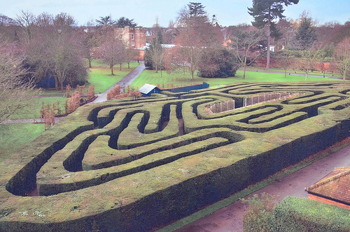 The Hampton Court maze.