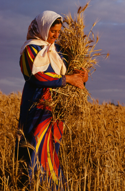 Moroccan Woman with Wheat. Photo By Owen Morse Copyright 2013