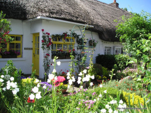 Adare flower garden